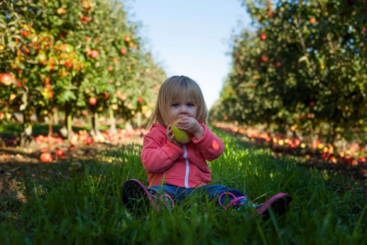 Rawfood en kinderen? 7 tips om kinderen pure smaken te leren waarderen