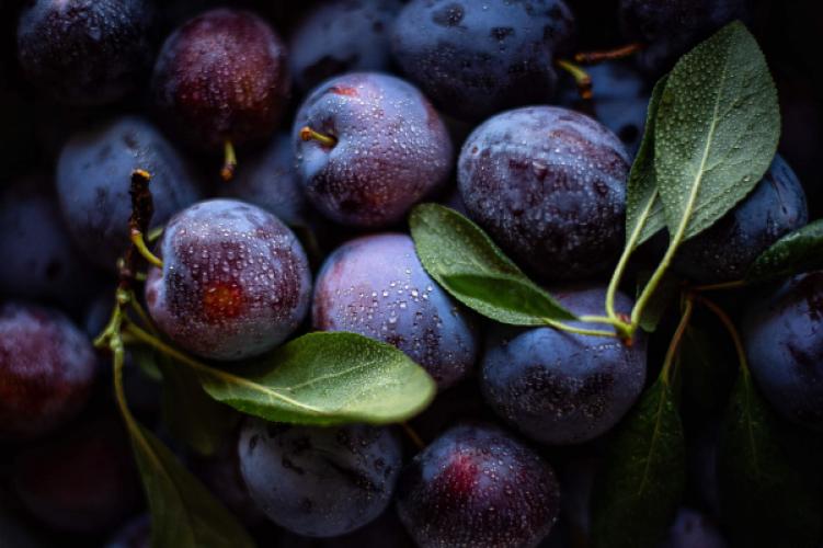 Pruimen – heerlijk herfstfruit