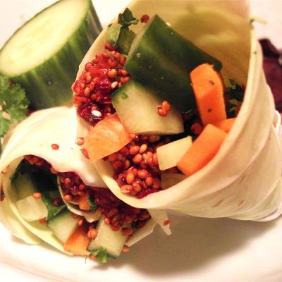Kool wrap met rode quinoa