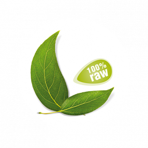 Groene Khorog Rozijnen RAW & BIO