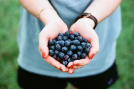 Veganisme – vanuit een gezondheidsperspectief